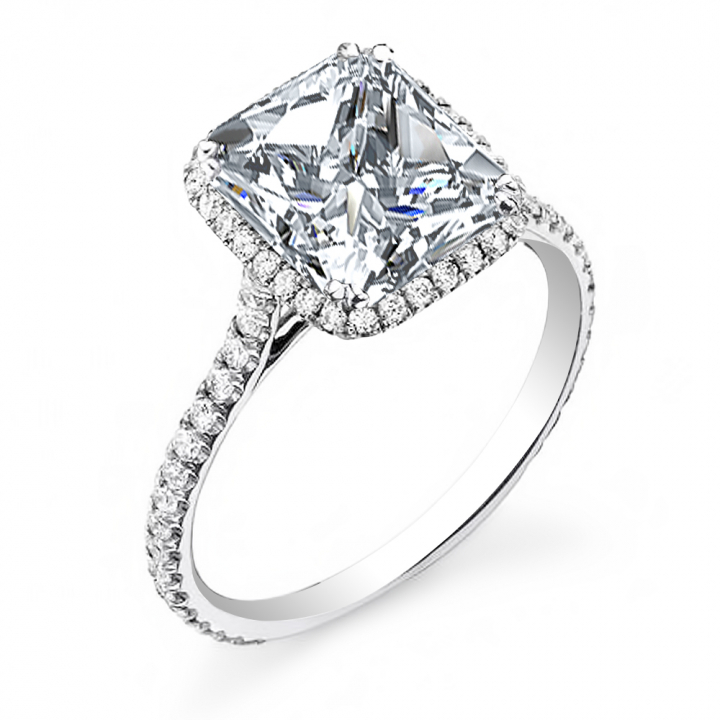 Classic Princess cut Engagement Rings