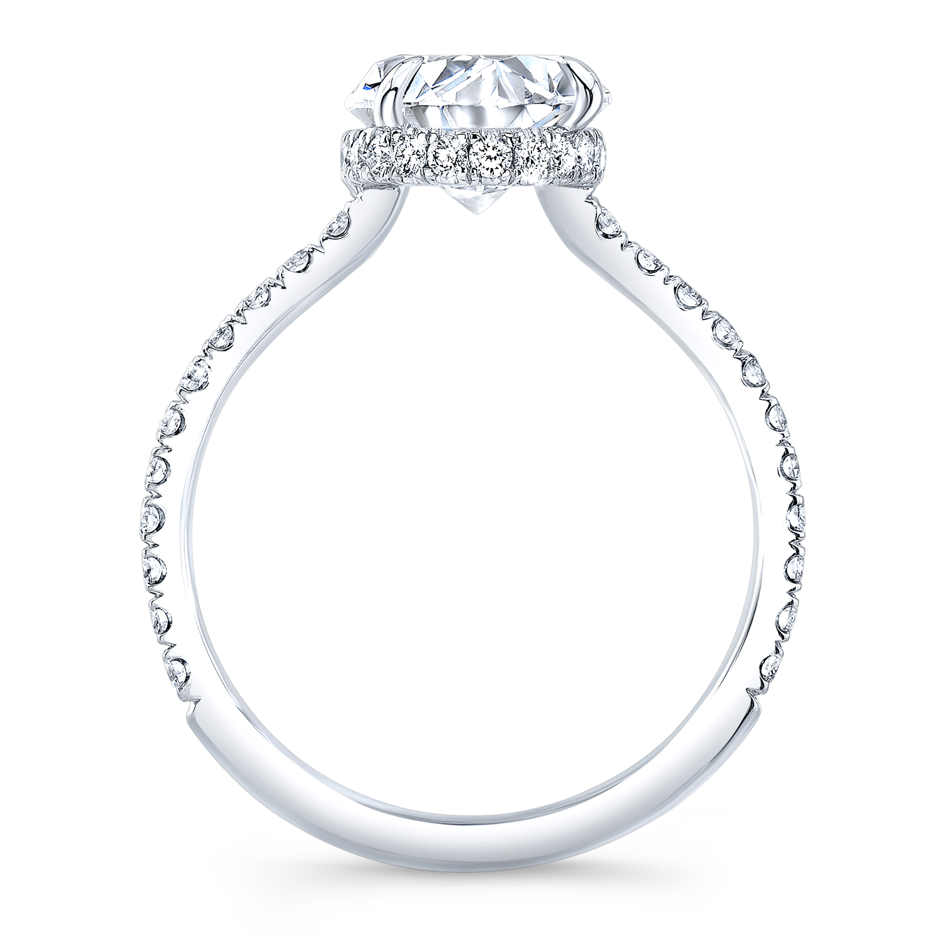 diamond engagement ring in white gold Natural Oval Hidden Halo Pave
